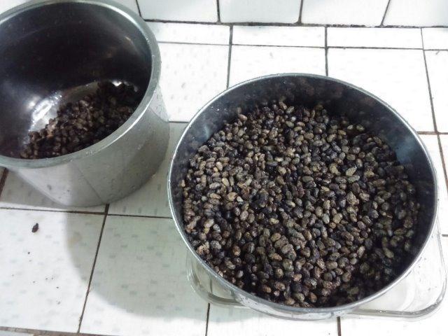 自製醬油-004