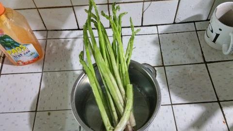 嘉義東石的蘆筍