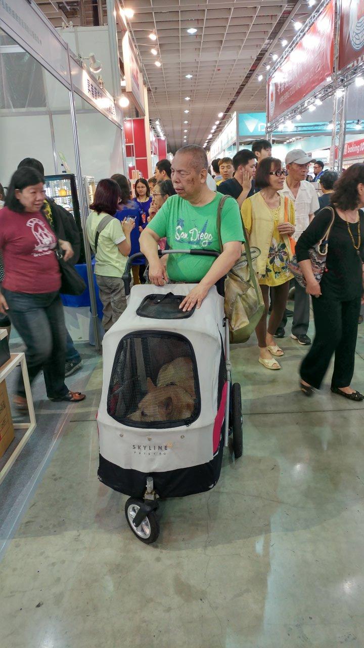 莫名的視障老人跟一隻狗