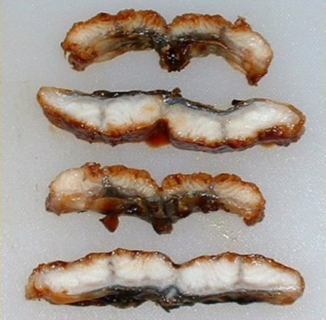 圖四 切開後 可看的出較小片的碳烤鰻魚醬汁都吸收進去了 而較大片的機械大量製成只有表面淋過的醬汁