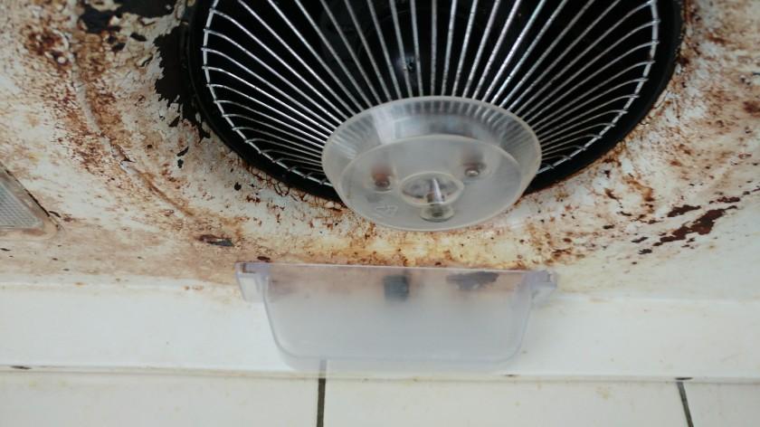 清洗油網-15
