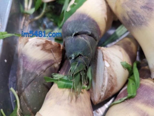 我個人認為『已長出竹葉的』叫做竹子,不是竹筍,根本沒有買來吃的價值。