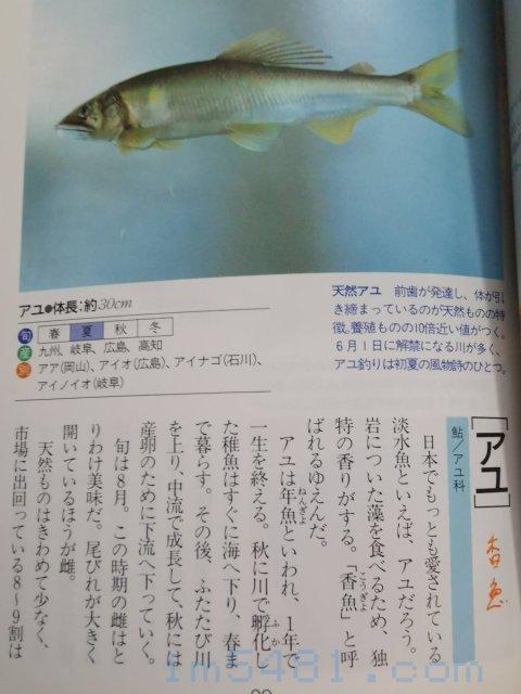 魚の目利食通事典(講談社)-香魚